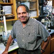 Phil Crews, Ph.D.